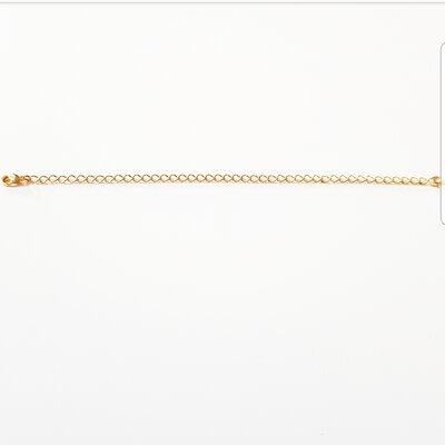 Extensor no banho ouro 18k (15cm de comprimento)