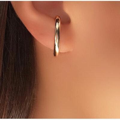 Brinco ear hook