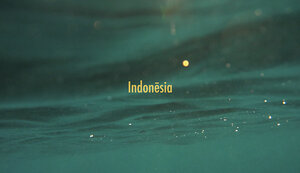 INDONESIA | 52 days, 4 islands