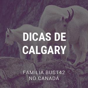 Road Trip Pelo Canadá - Calgary
