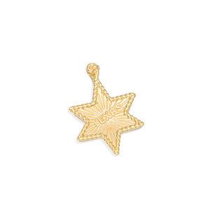 Pingente Estrela Texas Ouro
