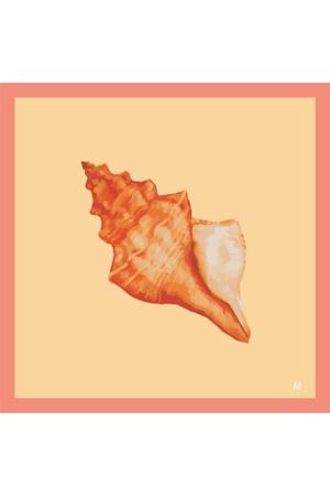 Pareô Conche - Coral