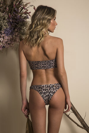 TOP BOW BEE LEOPARD