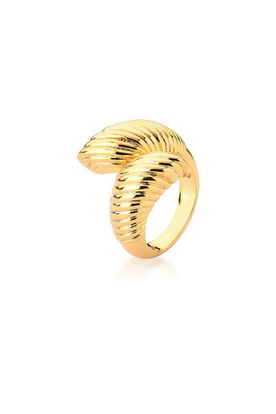Anel Dourado trançado liso