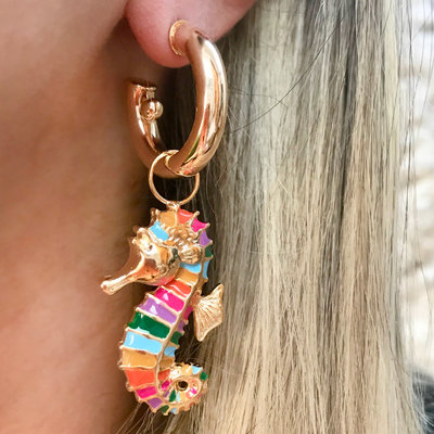 Argola Cavalo Marinho Rainbow