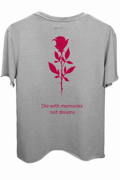 Camiseta estonada cinza clara Memories (Estampa magenta)