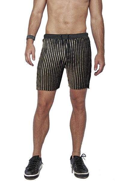 Shorts Plissado em Chifon
