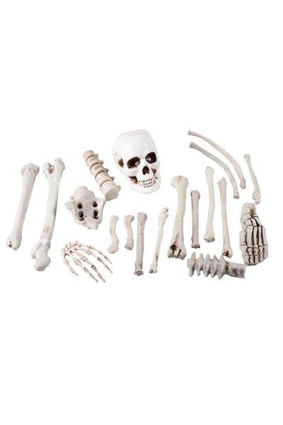 Saco com Esqueleto Decorativo Halloween