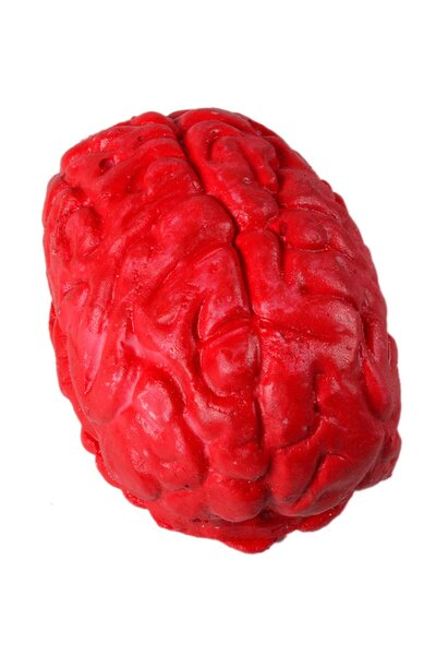 Cérebro Decorativo Halloween